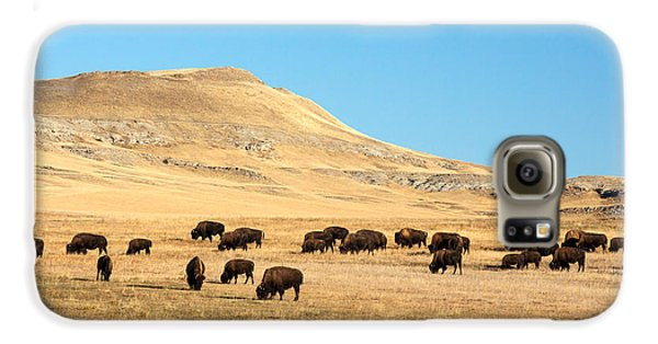 Great Plains Buffalo Galaxy S6 Case by Todd Klassy