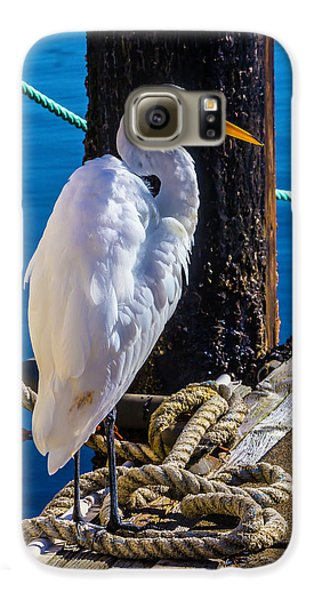 Great White Heron On Boat Dock Galaxy S6 Case by Garry Gay