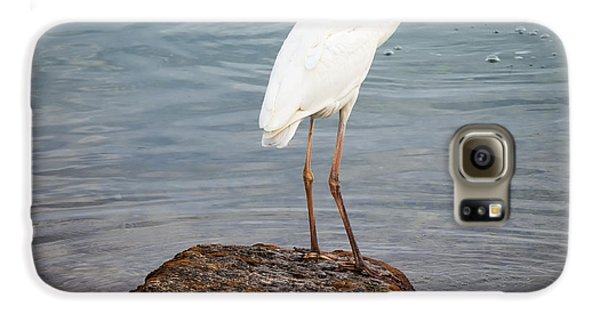 Great White Heron With Fish Galaxy S6 Case by Elena Elisseeva