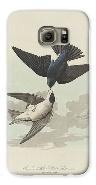Green-blue Or White-bellied Swallow Galaxy S6 Case by John James Audubon