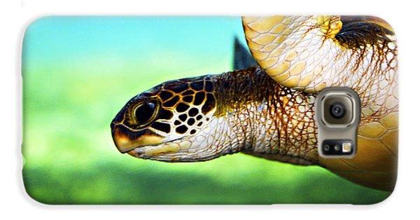 Green Sea Turtle Galaxy S6 Case by Marilyn Hunt