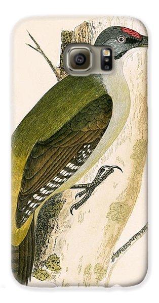 Grey Woodpecker Galaxy S6 Case by English School