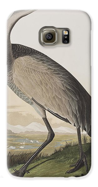 Hooping Crane Galaxy S6 Case by John James Audubon