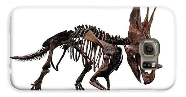 Horned Dinosaur Skeleton Galaxy S6 Case by Oleksiy Maksymenko