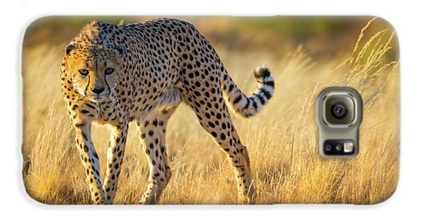 Hunting Cheetah Galaxy S6 Case by Inge Johnsson