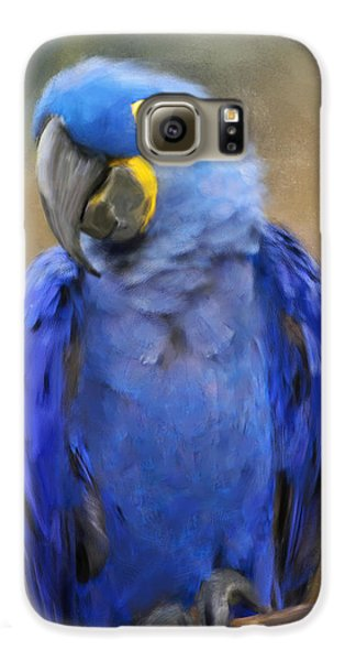 Hyacinth Macaw  Galaxy S6 Case by Jai Johnson