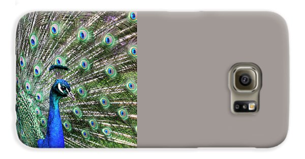 Iridescent Eyes Galaxy S6 Case by Tim Gainey