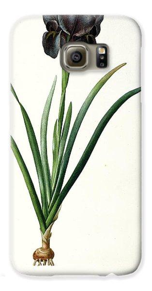 Iris Luxiana Galaxy S6 Case by Pierre Joseph  Redoute