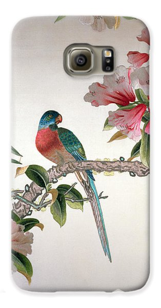 Jay On A Flowering Branch Galaxy S6 Case by Chinese School