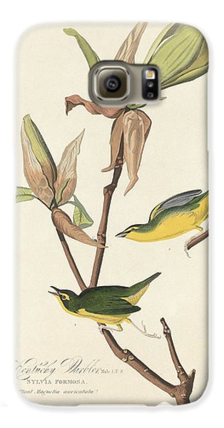 Kentucky Warbler Galaxy S6 Case by John James Audubon