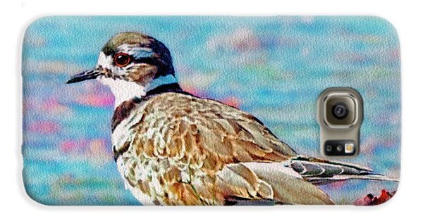 Killdeer  Galaxy S6 Case by Ken Everett