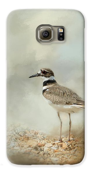 Killdeer On The Rocks Galaxy S6 Case by Jai Johnson