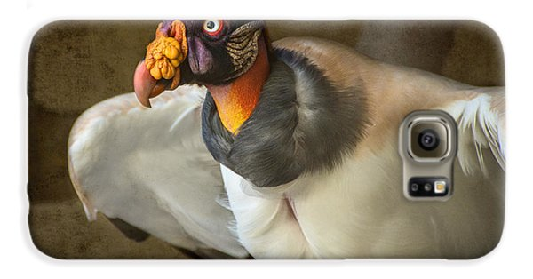 King Vulture Galaxy S6 Case by Jamie Pham