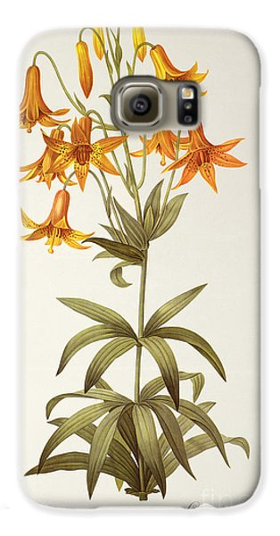 Lilium Penduliflorum Galaxy S6 Case by Pierre Joseph Redoute