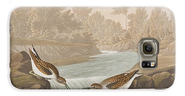 Little Sandpiper Galaxy S6 Case by John James Audubon