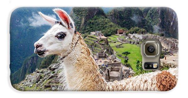 Llama At Machu Picchu Galaxy S6 Case by Jess Kraft