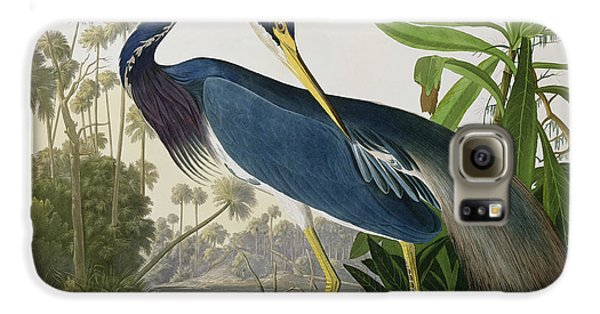 Louisiana Heron Galaxy S6 Case by John James Audubon