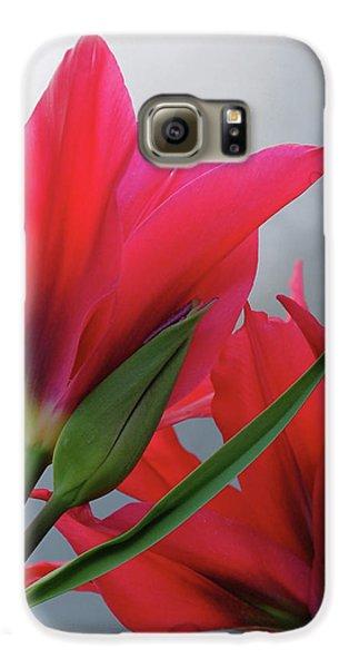 Love Galaxy S6 Case by Rona Black