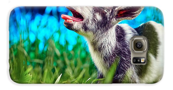 Baby Goat Kid Singing Galaxy S6 Case by TC Morgan