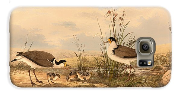 Masked Lapwing Galaxy S6 Case by Mountain Dreams