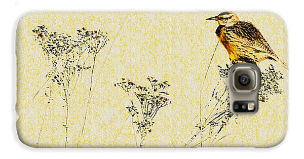 Meadowlark In Kansas Prairie 1 Galaxy S6 Case by Anna Louise