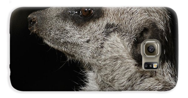 Meerkat Profile Galaxy S6 Case by Ernie Echols