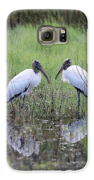 Meeting Of The Minds Galaxy S6 Case by Carol Groenen