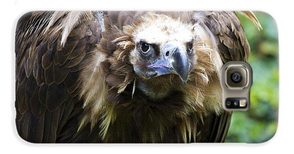 Monk Vulture 3 Galaxy S6 Case by Heiko Koehrer-Wagner