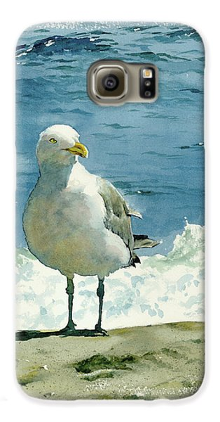 Montauk Gull Galaxy S6 Case by Tom Hedderich