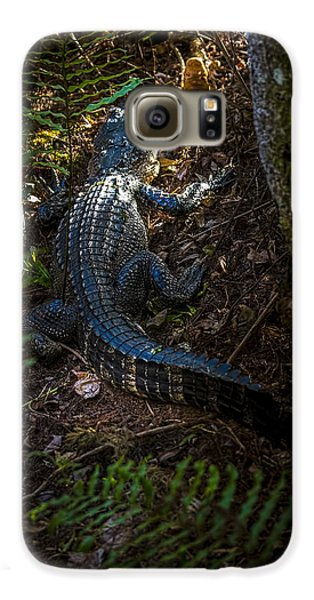 Mr Alley Gator Galaxy S6 Case by Marvin Spates