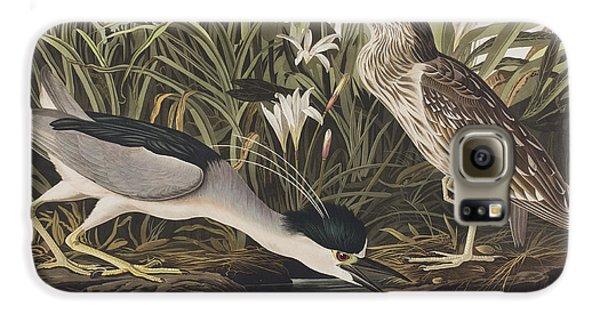 Night Heron Or Qua Bird Galaxy S6 Case by John James Audubon