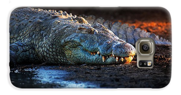 Nile Crocodile On Riverbank-1 Galaxy S6 Case by Johan Swanepoel