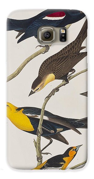 Nuttall's Starling Yellow-headed Troopial Bullock's Oriole Galaxy S6 Case by John James Audubon