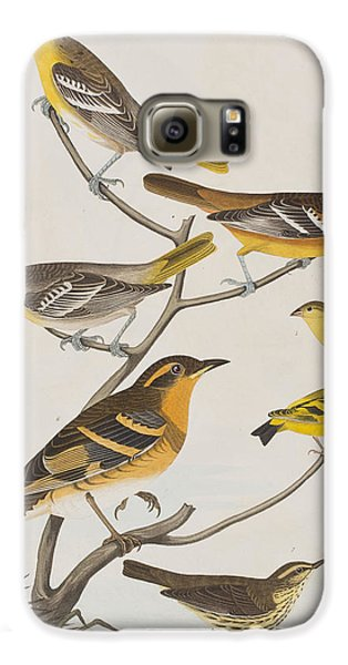 Orioles Thrushes And Goldfinches Galaxy S6 Case by John James Audubon