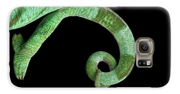 Parson Chameleon, Calumma Parsoni On Black Background, Top View Galaxy S6 Case by Sergey Taran