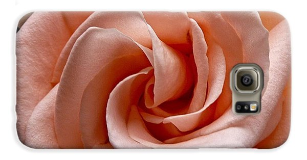Peach-colored Rose Galaxy Case by Sean Griffin