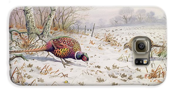 Pheasant And Partridge Eating  Galaxy S6 Case by Carl Donner