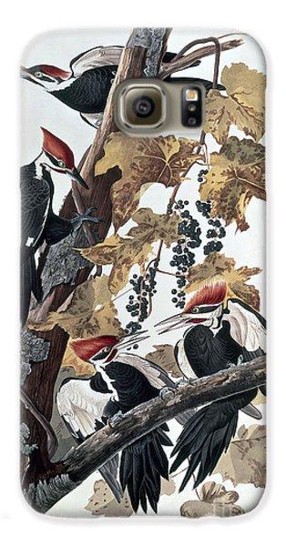 Pileated Woodpeckers Galaxy S6 Case by John James Audubon