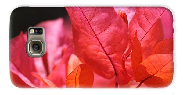 Pink And Orange Bougainvillea - Square Galaxy S6 Case by Rona Black