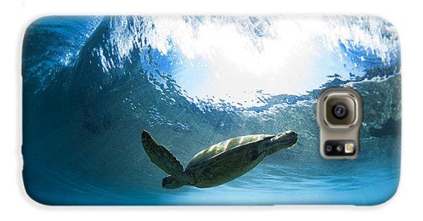 Pipe Turtle Glide Galaxy S6 Case by Sean Davey