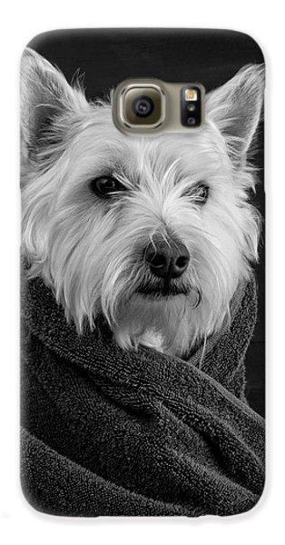 Portrait Of A Westie Dog Galaxy S6 Case by Edward Fielding