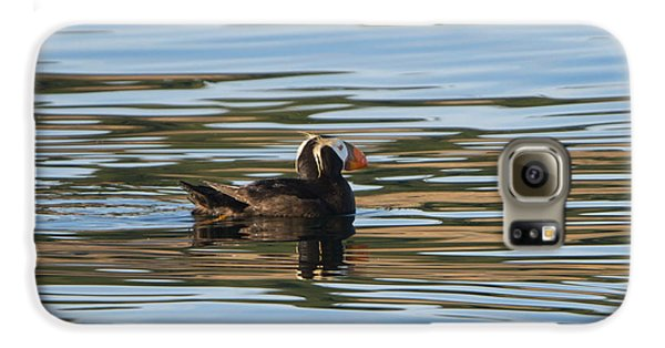 Puffin Reflected Galaxy S6 Case by Mike Dawson