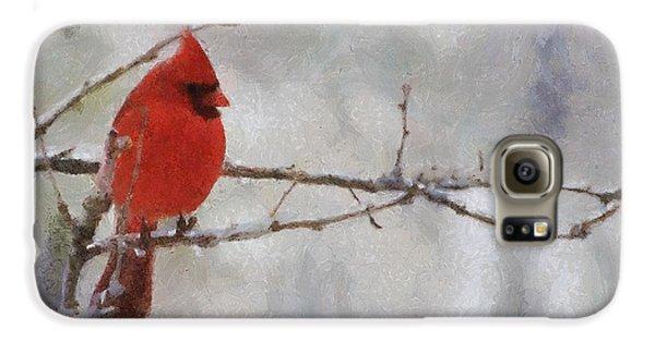 Red Bird Of Winter Galaxy S6 Case by Jeff Kolker