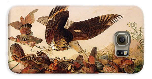 Red Shouldered Hawk Attacking Bobwhite Partridge Galaxy S6 Case by John James Audubon