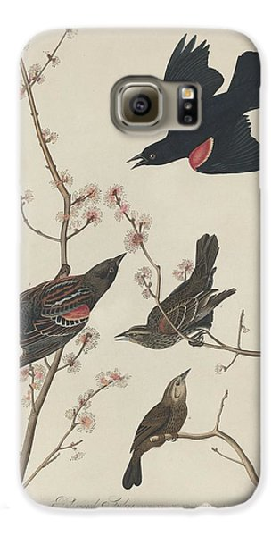 Red-winged Starling Galaxy S6 Case by John James Audubon