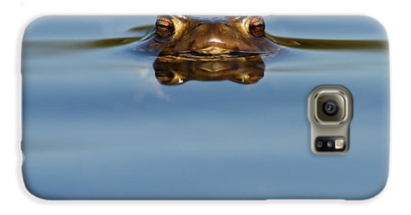 Reflections - Toad In A Lake Galaxy S6 Case by Roeselien Raimond