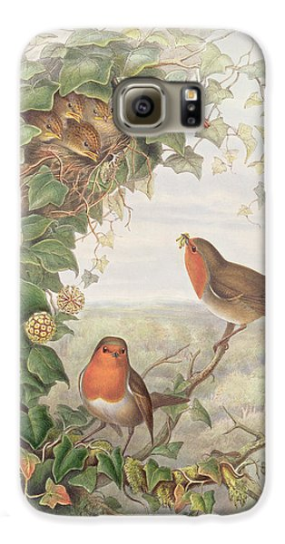 Robin Galaxy S6 Case by John Gould