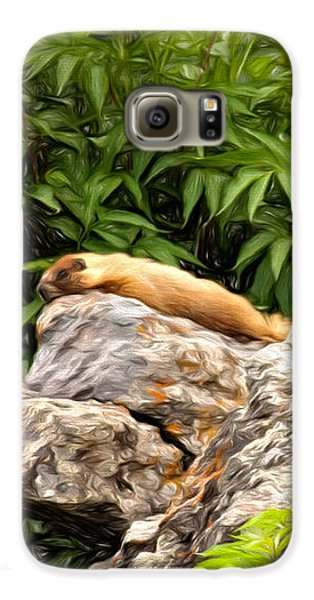 Rock Chuck Galaxy S6 Case by Lana Trussell