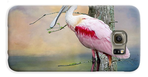 Roseate Spoonbill In Treetop Galaxy S6 Case by Bonnie Barry