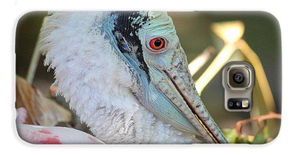 Roseate Spoonbill Profile Galaxy S6 Case by Carol Groenen